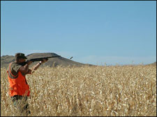Pheasant opener at the Buffalo Butte Ranch